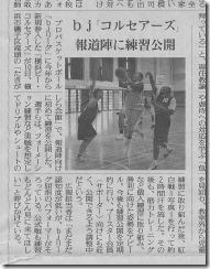 掲載紙読売新聞11.11.11