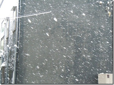 雪12年2月29日